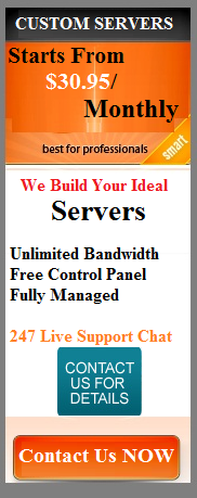 cheap Dedicated Server, Custom Dedicated Plan